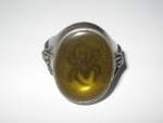 Amber Tomb Spider Ring Size W